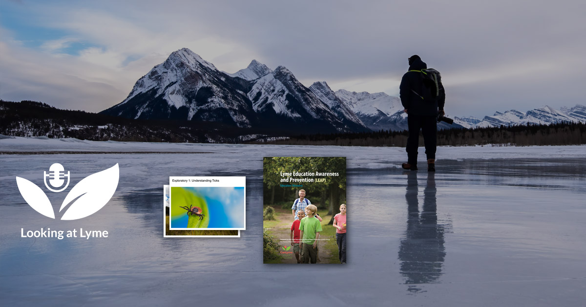 A person stands on the ice looking at the mountains with small Educator Resources floating in the foreground.