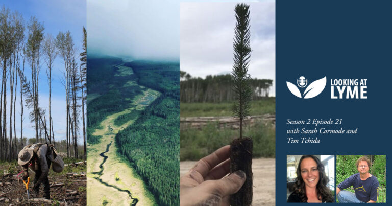 21. Sarah and Tim Tchida talk tick safety in treeplanting